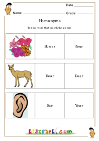 Homonyms,Teachers Printables,English Grammar Worksheets