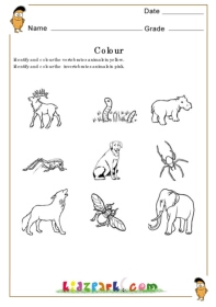 coloring fun worksheet - Activity Sheet For Preschoolers