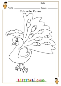 Colouring Pages For Lkg : Colour the Peacock, Kindergarten Curriculam,Downloadable Activity Sheet