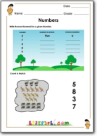Color the box for odd numberseducational activities for kids birds counting activity writing roman numeral worksheet for class 1 ibookread ePUb