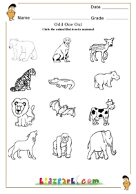 ... To Circle,Play School Activity Sheet,Print Out Worksheets for Kids