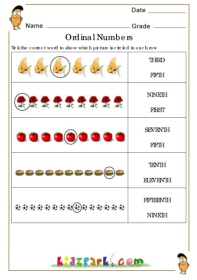 math worksheet : ordinal numbers worksheetslearning numbers worksheetmath  : Ordinal Numbers Worksheet Kindergarten