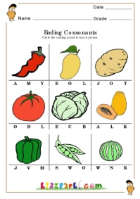Ending Consonant Digraphs Wall Reference Chart