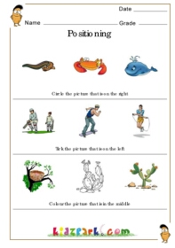 Fruits Position Learning Worksheet,Pre School Activity Sheet ...Positioning, Positioning