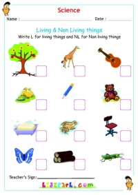 Worksheets Classify Living And Nonliving Things Worksheet science living non things