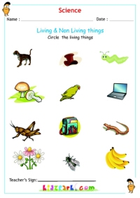 Living & Non Living things Science Worksheets
