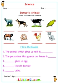 domestic animals science worksheet. Black Bedroom Furniture Sets. Home Design Ideas
