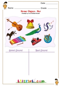 Sense Organs , EVS Worksheet for CBSE and ICSE