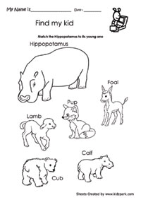 math worksheet : kindergarten worksheet for hippopotamus and its young one  : Kindergarten Science Worksheets