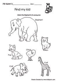 k 3 science worksheet - Kids Activity Sheet