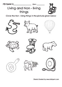 Printables Living Vs Nonliving Worksheet hen and its young one activities sheetpre school activity sheets k 3 science worksheet