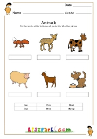 K-3 Science Worksheet