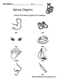 ... About Sense Organs,Pre School Activity Sheets,Printable Worksheets