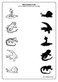 shadow fun worksheet - Fun Worksheet For Kindergarten