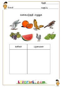 Printables Classification Worksheet classify the pictures worksheetsdownloadable tamil worksheets pictures