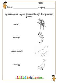 ... Worksheets,Junior K G Worksheets,Learning Tamil for Kids Worksheets